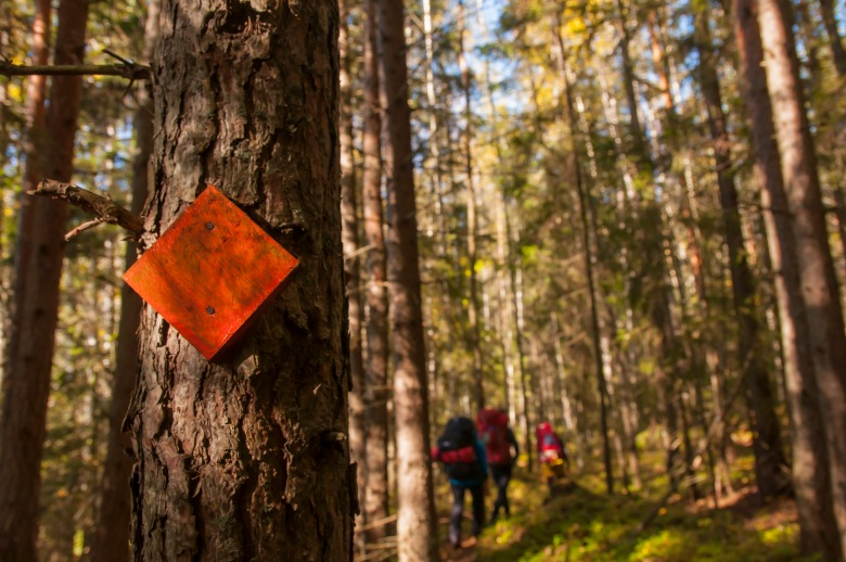 Pienellä siksakilla Liesjärven kansallispuistossa sai aikaan mukavan 13 kilometrin lauantaipatikan leiripaikalta toiselle.