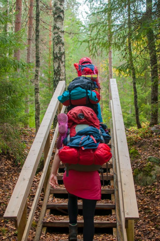 Liesjärven kansallipuistossa portaat ovat vähän lyhyempiä kuin Lapissa.